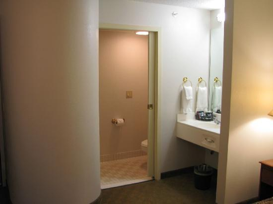 La Quinta Inn & Suites Minneapolis Northwest: Vanity area