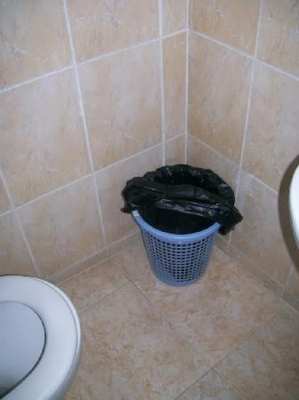 Alaska Camp & Hotel: Hygeinic toilet?