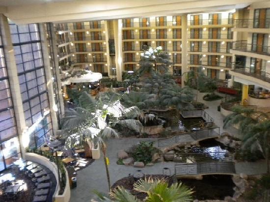 Embassy Suites Phoenix Biltmore Hotl Lobby It Just Got