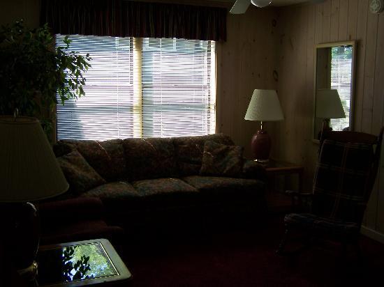 Carr's Northside Cottages & Motel: half of the livingroom