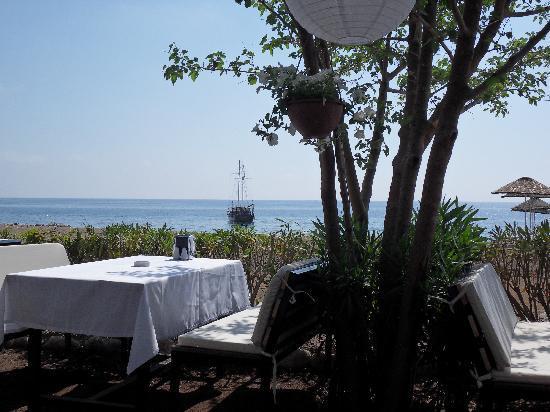 Kutle Hotel : Blick aus dem Strandrestaurant