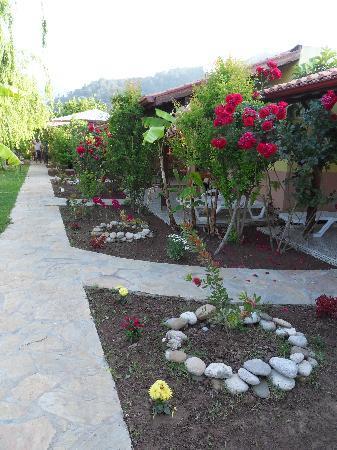 Kutle Hotel : Weg zu den Bungalowzimmern