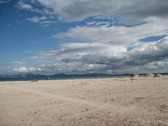 Paraiso de Alcudia: The beach of Alcudia in May!