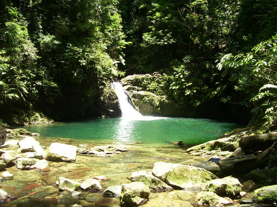 Trinidad og Tobago: Rio Seco Waterfall and Pool.
