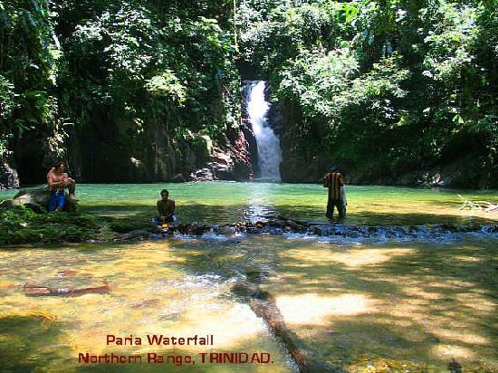 Trinidad og Tobago: Paria Waterfall and Pool.