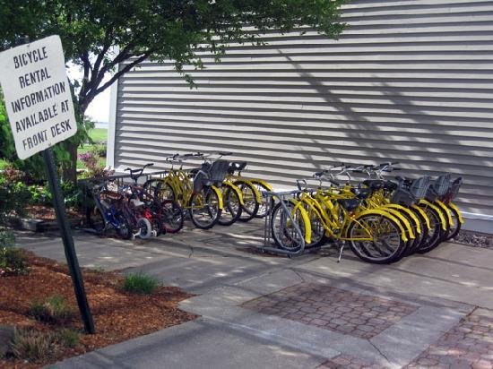 Maumee Bay Lodge and Conference Center: Bike rentals for all ages.