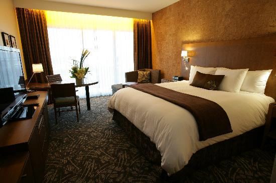 Miyako Hybrid Hotel: Deluxe King Room