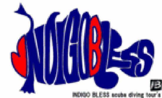 Cebu Scuba Diving Tour -  Indigo Bless: INDIGO BLESS ロゴ