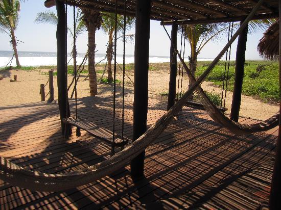 Playa Viva: Hammocks