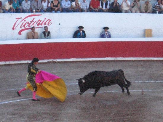 SonjoWasi: Corrida de Toros 3 blocks down the Street