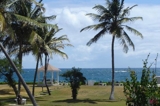 Island Paradise Beach Village: Beautiful view to Ocean