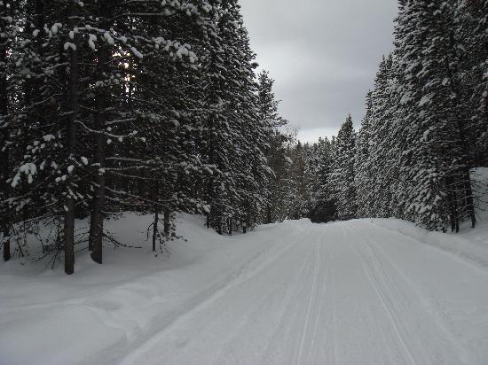 Trailhead Inn: Winter Park