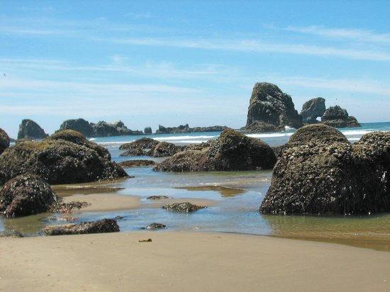 Cannon Beach, Όρεγκον: The Beach