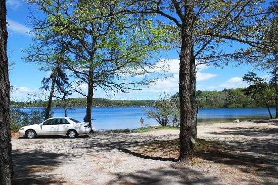 Nickerson State Park Campgrounds: Cliff Pond Trail