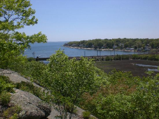 Rocky Neck State Park: View from the walking trails