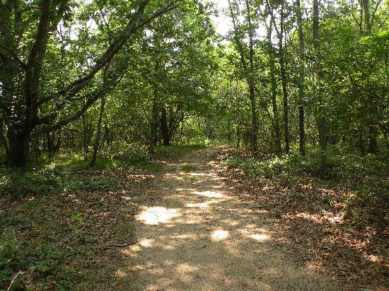 Trustom Pond National Wildlife Refuge: Very clear paths.