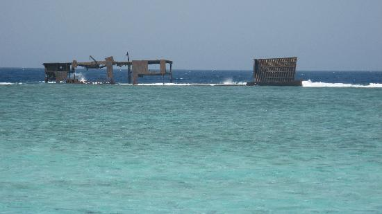 Sharm El Sheikh Marriott Resort: Do we dive?