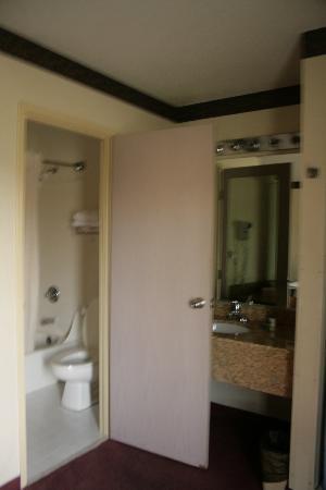 Quality Suites: Bathroom