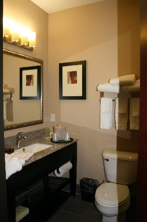 Holiday Inn Hammond: Bathroom