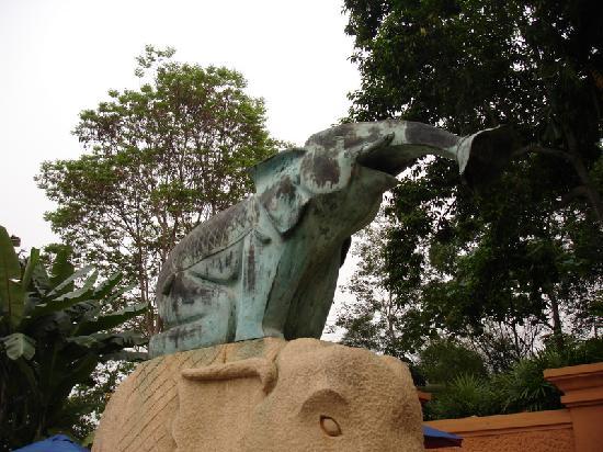 Anantara Golden Triangle Elephant Camp & Resort: Pool Shower