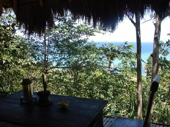 Boracay Private Mt. Casitas Villa : The view from the Balinese hut