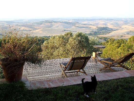Lajatico, Italy: panorama