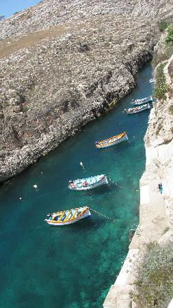 Blue Grotto (Il-Hnejja): the natural harbour