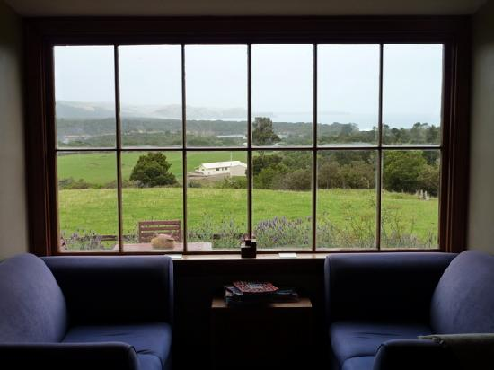Hilltop Accommodation Catlins: View from lounge room