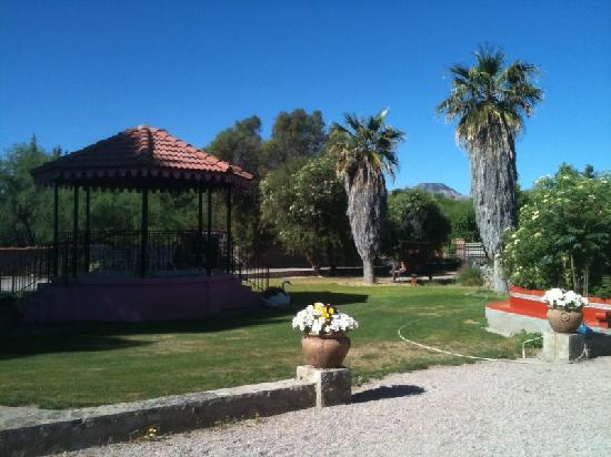 Tubac, AZ: Gazebo and palms
