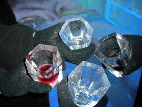 Icebar Orlando: SHOT GLASSES IN ICEBAR