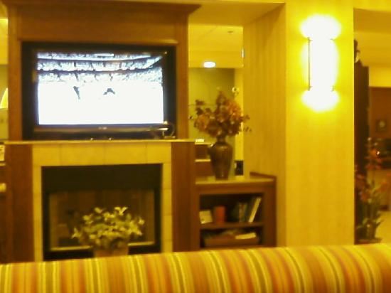 Hampton Inn Pittsburgh Area-Beaver Valley-Ctr Township: Flat Screen TV in lobby breakfast area