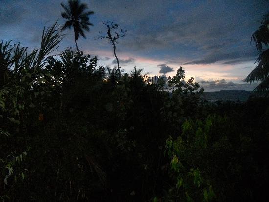 Guaria de Osa Ecolodge: The incredible view from our tent hut.