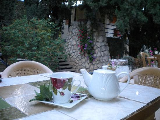 Safed Inn: Evening Herb Tea Was a Special Touch