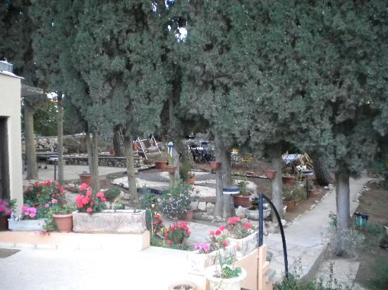 Safed Inn: Courtyard Gardens