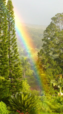 Ekena: Amazing Rainbow From Deck