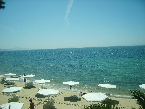 Nikiti, Grecia: The beach...