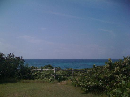 Blue Horizon Boutique Resort: view from Esperaza bungalow!
