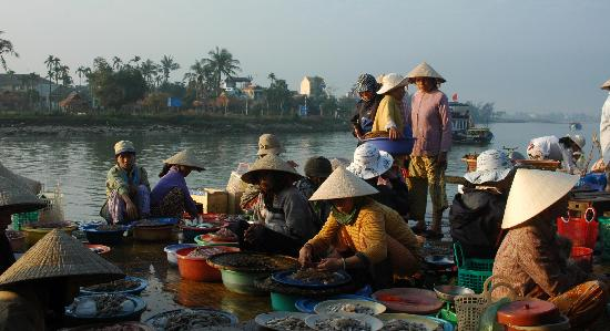 Hoi An Photo Day Tours & Workshop : Early Morning Fish Market, Hoi An, Vietnam