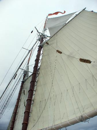 Foto de Tall Ship Manitou - Day Tours