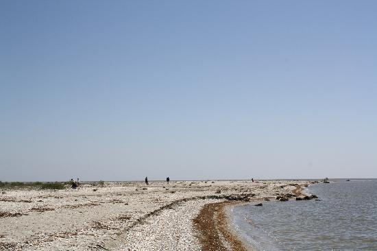 Danube Delta: Here the Danube spills into the Black Sea