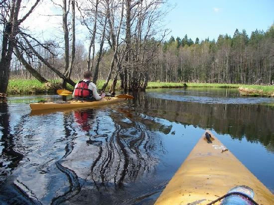 Estonia: Kayaking in Soodla river