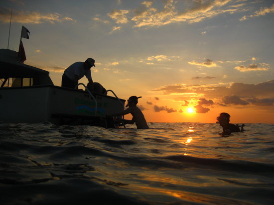 Quiescence Diving Services : Evening Dive