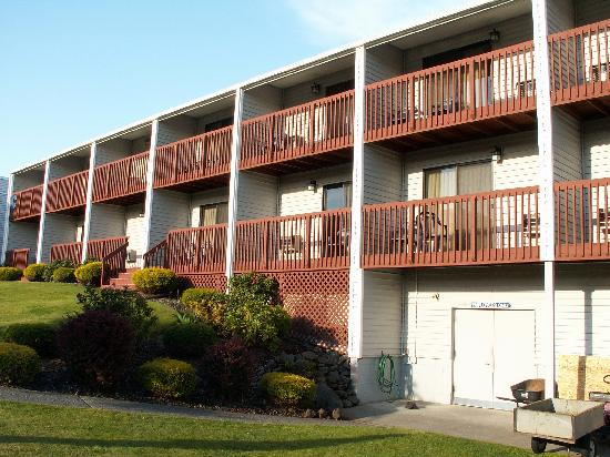 Shilo Inn & Suites - The Dalles: One of hotel buildings facing pool