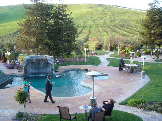 The Purple Orchid Wine Country & Spa: The setting!!