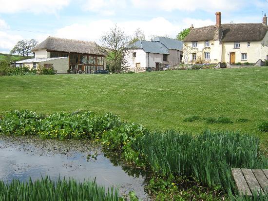 Coldridge, UK : View across the pond to the barn
