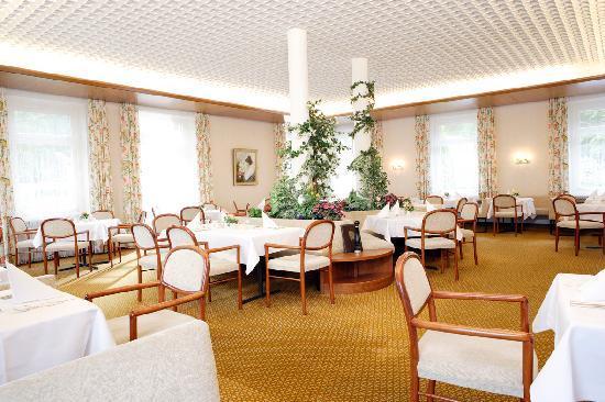 Kurhotel Alpina: Restaurant