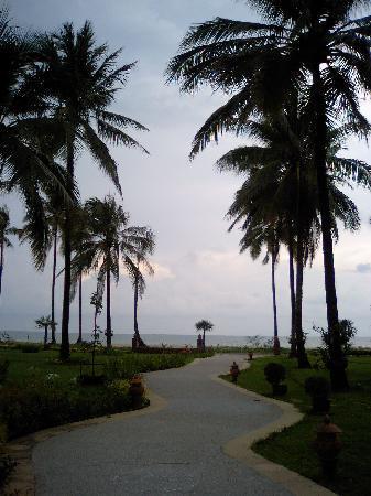 ホテルからビーチに続く道