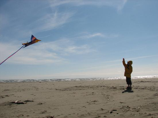 Pacific Beach Resort Conference Center Kite Flying On The