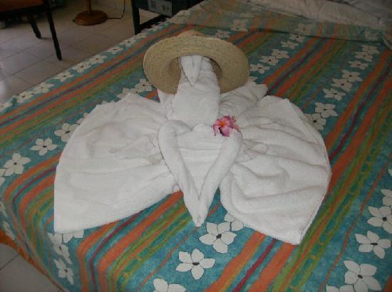 Brisas del Caribe Hotel: Maid Art
