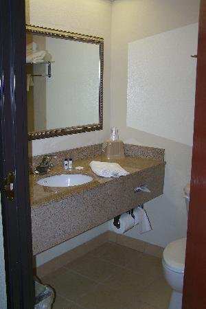 Baymont Inn & Suites Columbia Fort Jackson: Decent bathroom